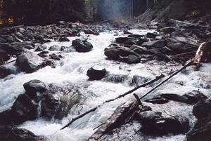 North Fork Quinault River Ford