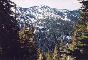 Pk 4810 near Mt. Lawson