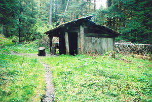 Trappers Shelter (Quinault River Trail)