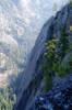 1826RopeUp10-04_035resize.jpg