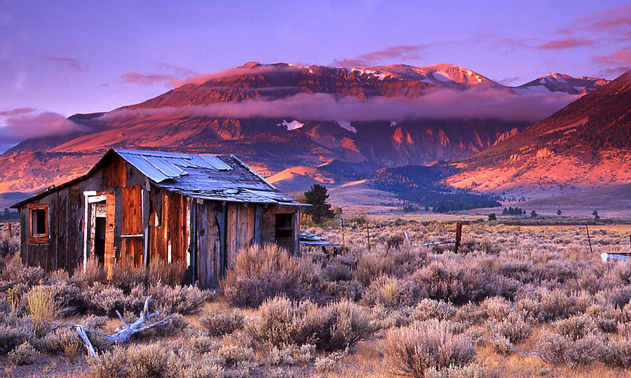 cabin-on-395-eastern-sierra-steven-reed.jpg