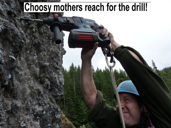 choosy_mothers_reach_for_the_drill_1.jpg