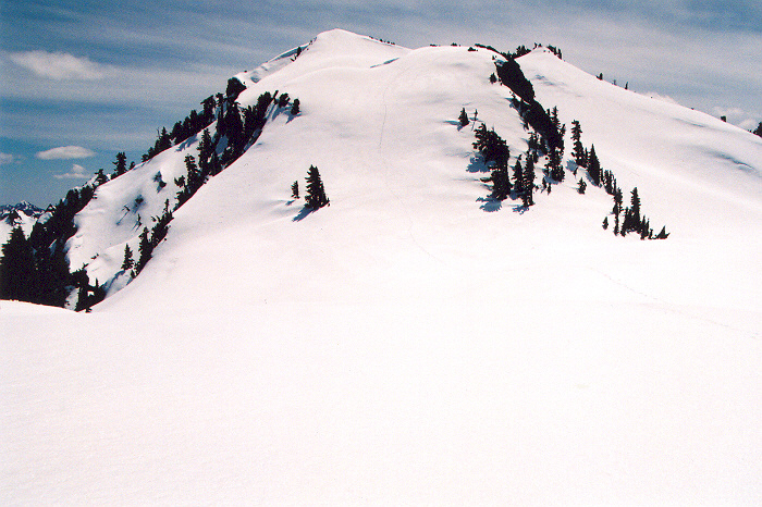 945Lawson_summit_area.jpg