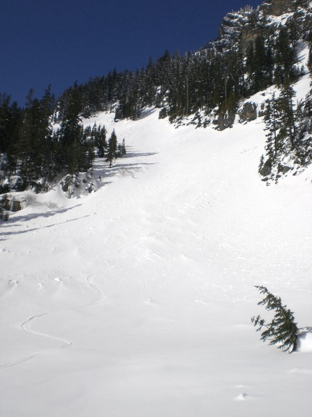Line_down_from_south_Rampart_to_Laura_Lake.JPG