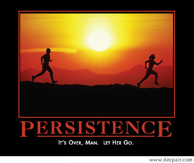 326273-persistance.jpg.70b47c90d49a14ebfbf578d3bbc6c5e0.jpg