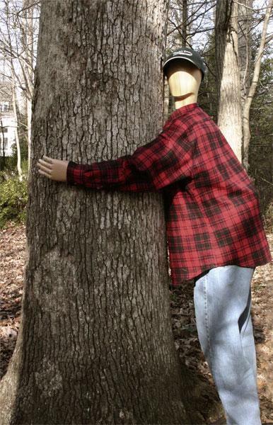 468634-treehugger-big.jpg.40000213282c41d5173a622c77be4a92.jpg
