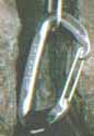5a1a55a7c039f_384524-Image16.jpg.c5b95f95c8b53b607ae587288feffe06.jpg
