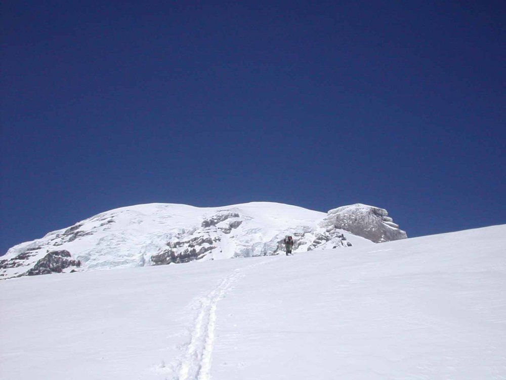 173363-Ascent.thumb.jpg.38408d196b3c47dcf32570be9fb1709e.jpg