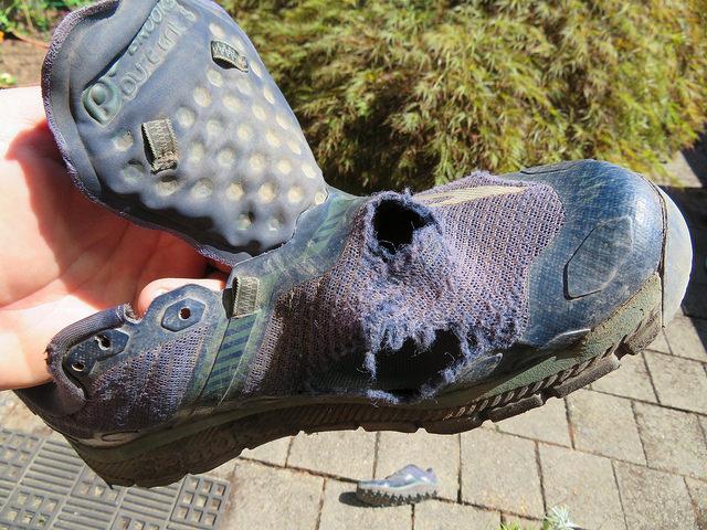 Shoe.jpg.dcadbd27026ba2db00021bf3fce9a002.jpg