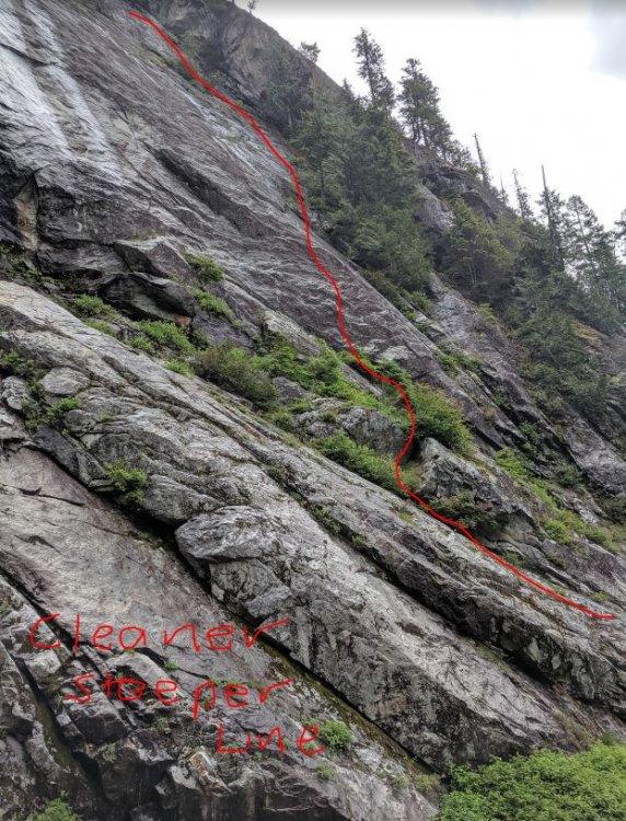cleaner steeper line.JPG