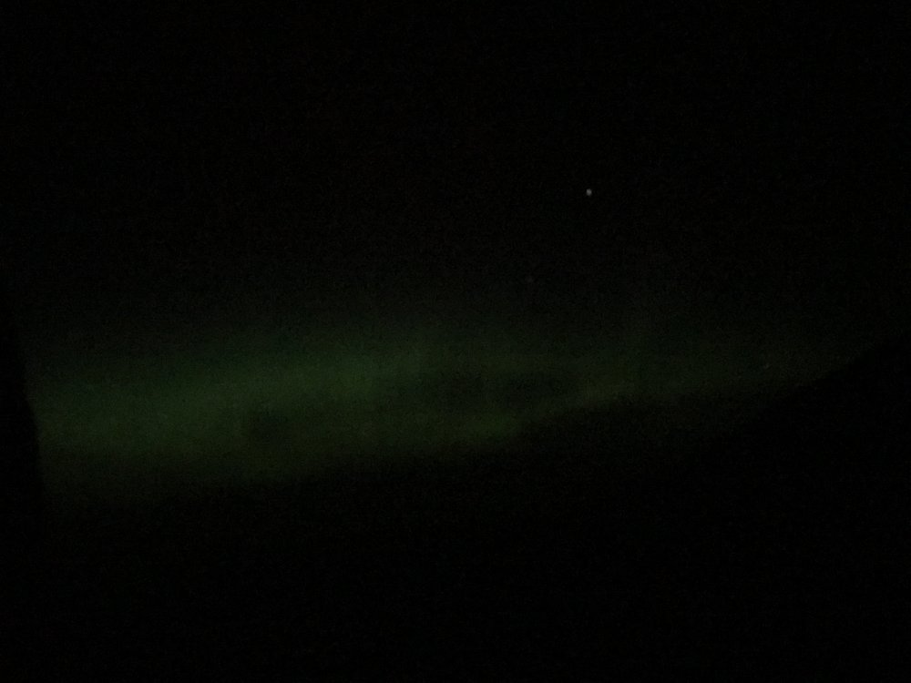 5d4a084ed81ee_NorthernLights.thumb.JPG.a0087c9c04a0ca318ea65fb4ce2a6005.JPG