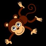 Canyon Monkey