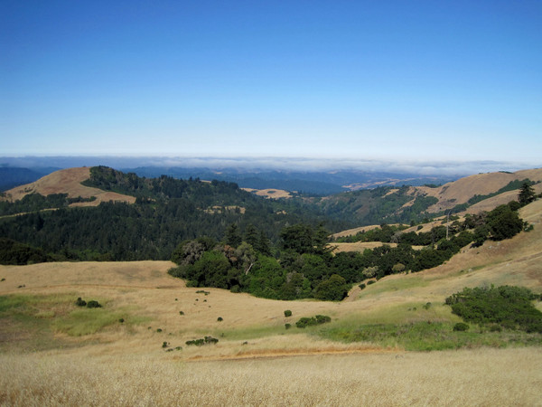 From Russian Ridge